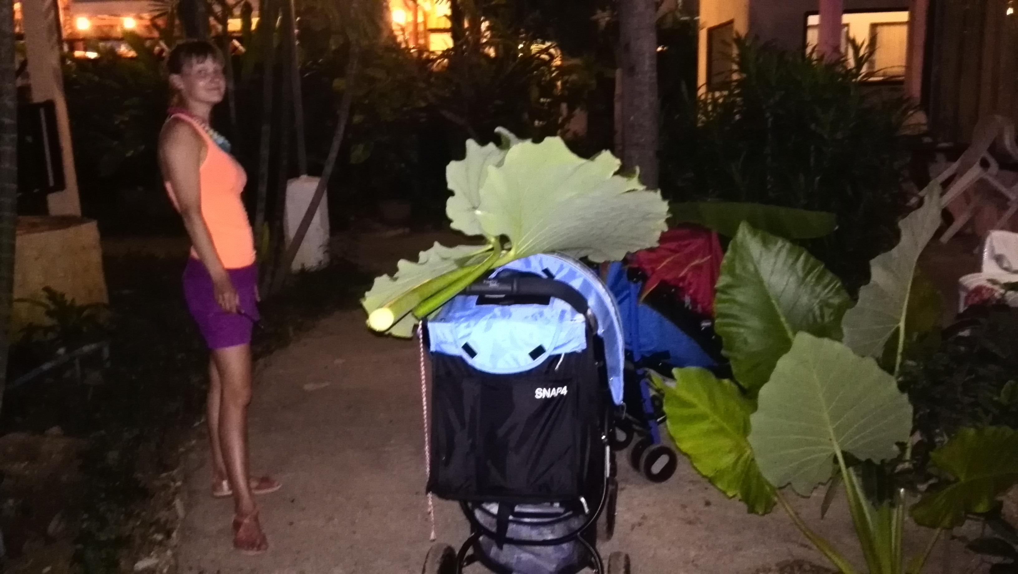 Путешествия с детьми: Таиланд. Наши заметки: Операції під покровом ночі