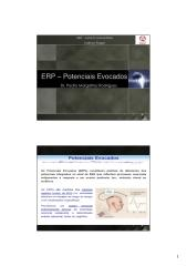 Aula_9 - ERP.pdf