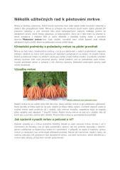 Několik užitečných rad k pěstování mrkve.docx